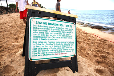 26_Basking-sign_370
