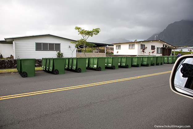 Yard-Waste-Bins