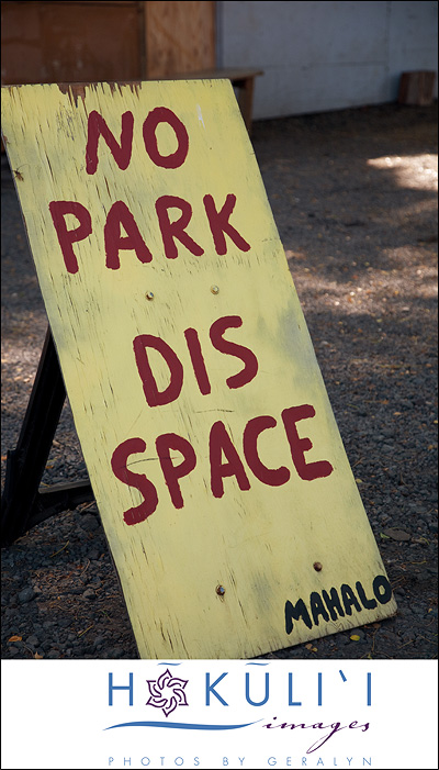 No-Park-Dis-Space
