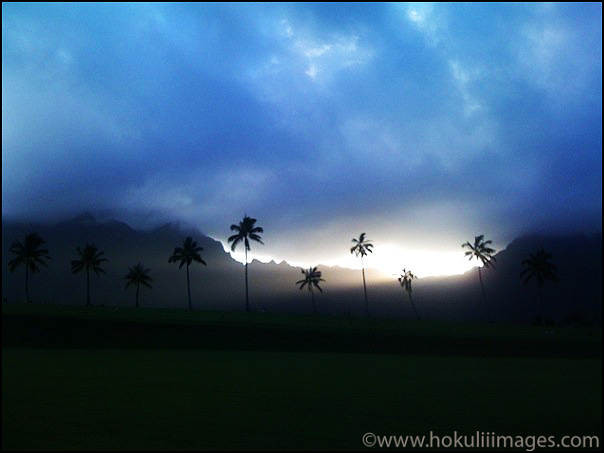 Ko'olaus-and-the-miracle
