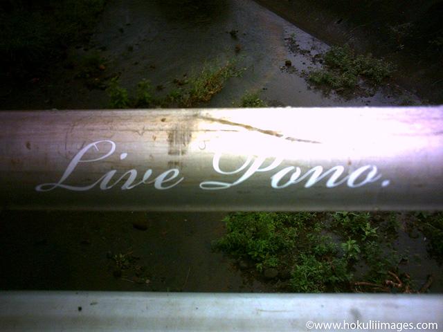 Live-pono
